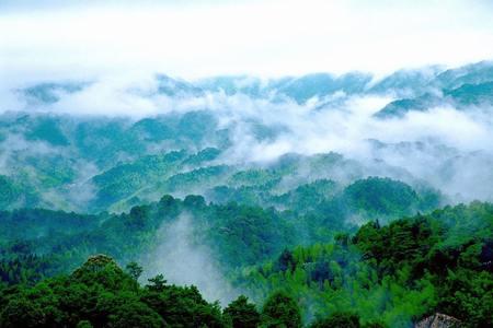 惠州南昆山团建,每一口呼吸都是11万颗/cm³负氧离子 | 旅游团建系列